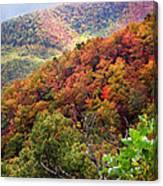 Fall Colors Along The Blueridge Canvas Print