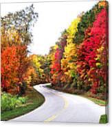Fall Colors Along The Blueridge Parkway Canvas Print