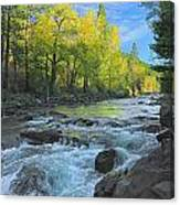 Fall Colors And The Little Salmon River Canvas Print