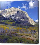 Fall Colors At Gunnison National Forest Canvas Print