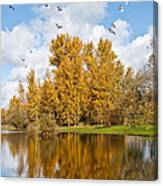 Fall Colors Clouds And Western Gulls Reflected In A Pond Canvas Print