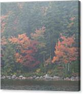 Fall Colors In Acadia National Park Maine Img 6483 Canvas Print