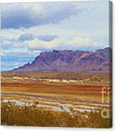 Fall Colors In The Lake Bed Canvas Print