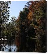 Fall Colors In The Swamp Canvas Print