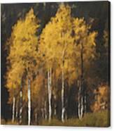 Fall Colors In Washington Cascades Canvas Print