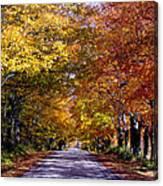 Fall Colors Near Sister Bay Canvas Print