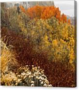 Fall Colors On June Lake Loop Canvas Print