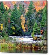 Fall Colors On The  Tahquamenon River   Canvas Print