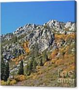 Fall Colors S Lake Tahoe California Canvas Print