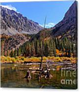 Fall Colours Reflection Canvas Print
