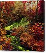 Fall Creek Fastasy Canvas Print