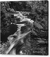 Fall Creek Flow II Canvas Print