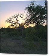 Cedar Park Texas Fall Creek Sunset Canvas Print