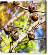 Fall Crepe Myrtle Canvas Print