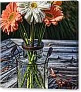 Fall Daisy Cheer Canvas Print