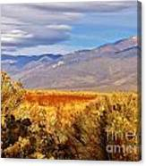 Fall Desert Colors Canvas Print
