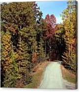Fall Drive Thru Canvas Print