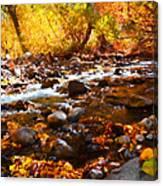 Fall Flow At Mcgee Creek Canvas Print