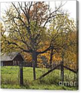 Fall Foilage In Country Canvas Print