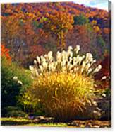 Fall Foilage In The Mountains Canvas Print