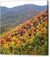 Fall Folage 2 Along The Blueridge Canvas Print