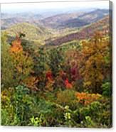Fall Folage 3 Along The Blueridge Canvas Print