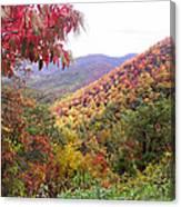 Fall Folage Along The Blueridge Canvas Print