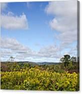 Fall Foliage Hilltop Landscape Canvas Print