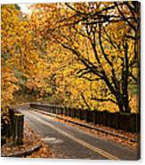 Fall Foliage On The Highway Canvas Print