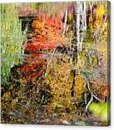 Fall Foliage Reflection 2 Canvas Print