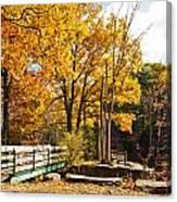 Fall Foliage Vi Canvas Print