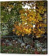 Fall Gate Canvas Print