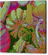 Fall Gourds Pinked Canvas Print