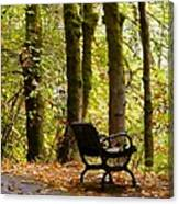Fall Has Arrived Canvas Print