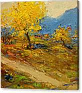 Fall In Albania Canvas Print