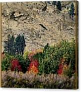Fall In Carson Valley  Canvas Print