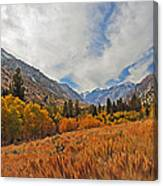 Fall In Lundy Canyon Canvas Print