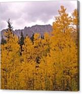 Fall In Maroon Bells Canvas Print