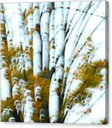 Fall In Motion Canvas Print