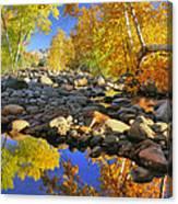 Fall In Oak Creek  Canvas Print