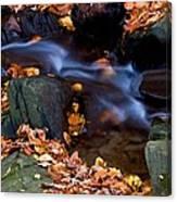 Fall In Rock Creek Park Canvas Print