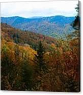 Fall In The Blue Ridge Mountains Canvas Print