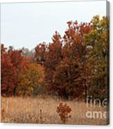 Fall In The Flint Hills Canvas Print