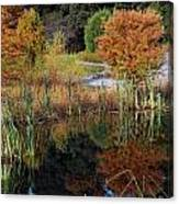 Fall In The Wetlands Canvas Print