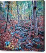 Fall In The Woodlands Canvas Print