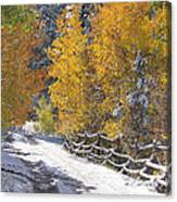 Fall Into Beartrap Meadow - Casper Mountain - Casper Wyoming Canvas Print