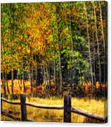 Fall Is In The Air  Canvas Print