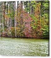 Fall Landscape 2 Canvas Print