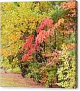 Fall Landscape 3 Canvas Print