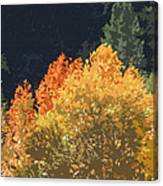 Fall Leave On The East Verde River Canvas Print